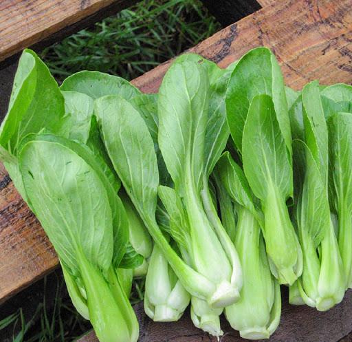 cac loại rau bo sung vitamin cho mat sang khoe 03