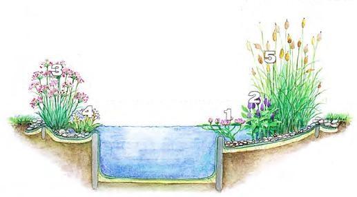 пруд в саду, Пруд в саду своими руками