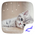 Cute Kitty file APK for Gaming PC/PS3/PS4 Smart TV