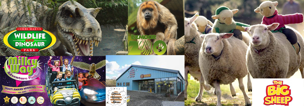 North Devon is jammed packed with open attractions that children will love.