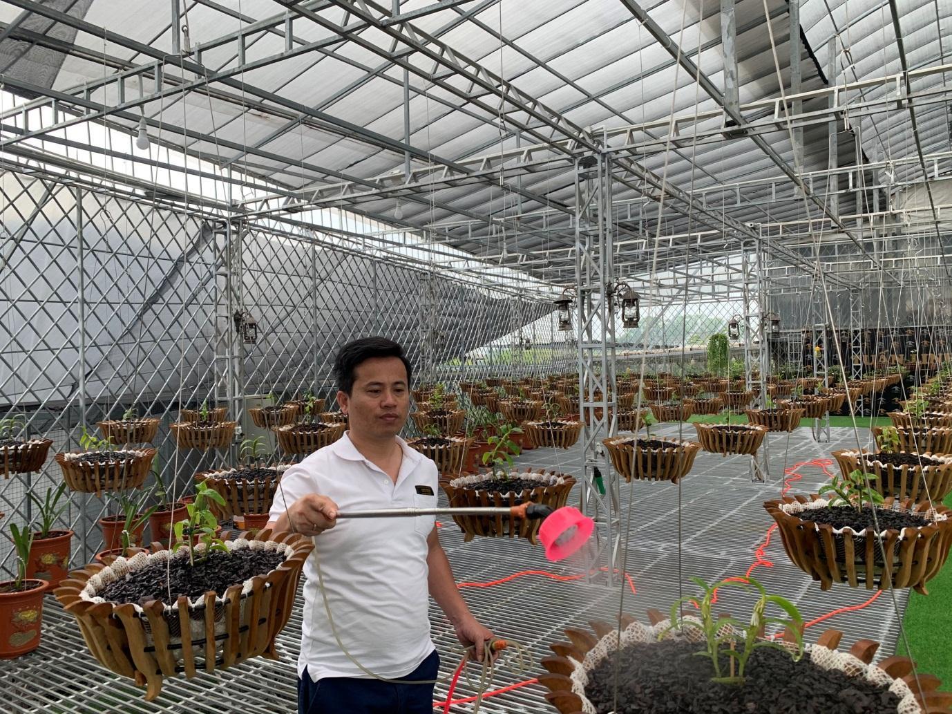 Bí quyết thành công của ông chủ vườn lan Tuan Linh - Ảnh 2