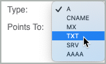 From the Type drop-down list, TXT is selected.