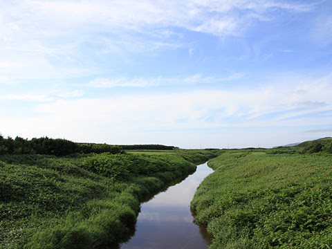 JR北海道 観光列車「風っこそうや」 車窓_25