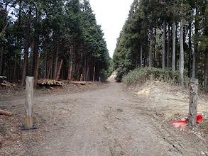 左から地図の林道と出合う
