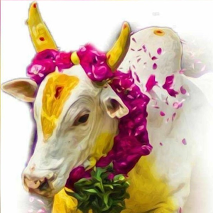 Download Jallikattu Apk Full Apksfull Com Can't find what you are looking for? download jallikattu apk full apksfull com