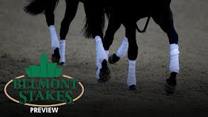 Belmont Stakes Preview thumbnail