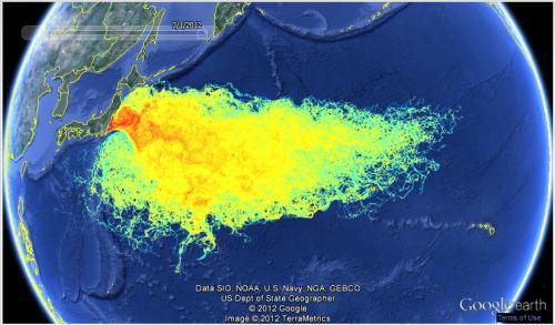 海洋汚染は、海の魚を汚染し続ける
