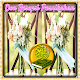 Doa Resepsi Pernikahan Download on Windows