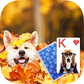 Solitaire Playful Dog Theme