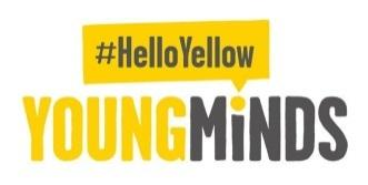 "Hello Yellow"" Young Minds Campaign - Fleetwood High School"