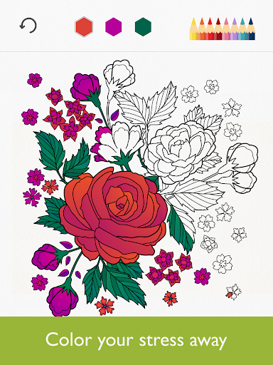 Colorfy – Coloring Book v2.9.1 [Plus]