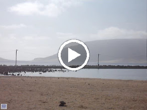 Video: MOVIE - From the left, the beach at Praia Grande and above it Monte Verde. To the right, Baia das Gatas.