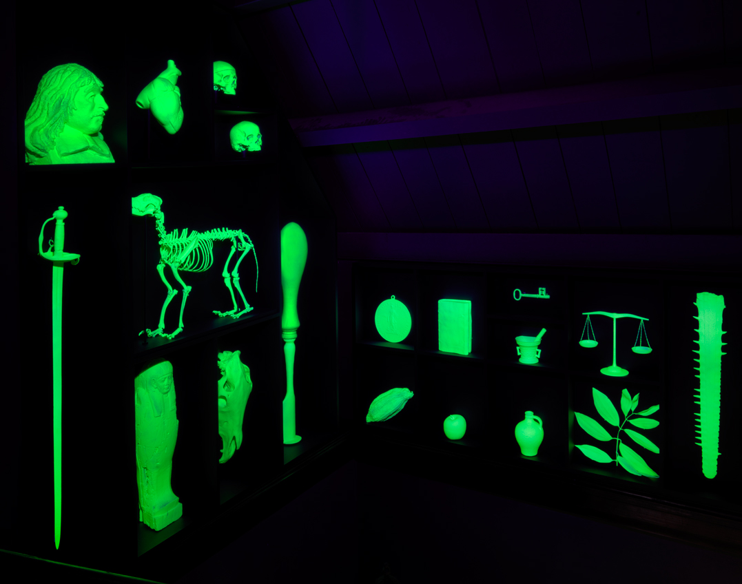 The Leiden University Phantom Cabinet - Mark Dion