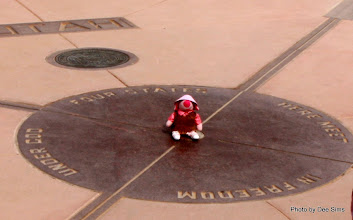 Photo: (Year 3) Day 46 - Pippa at the Four Corners - Utah, Colorado, New Mexico and Arizona Meet