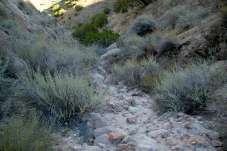 Photo: Very rocky gully