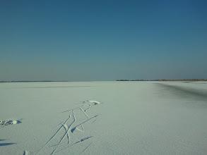 Photo: 004 Sporen in de sneeuw