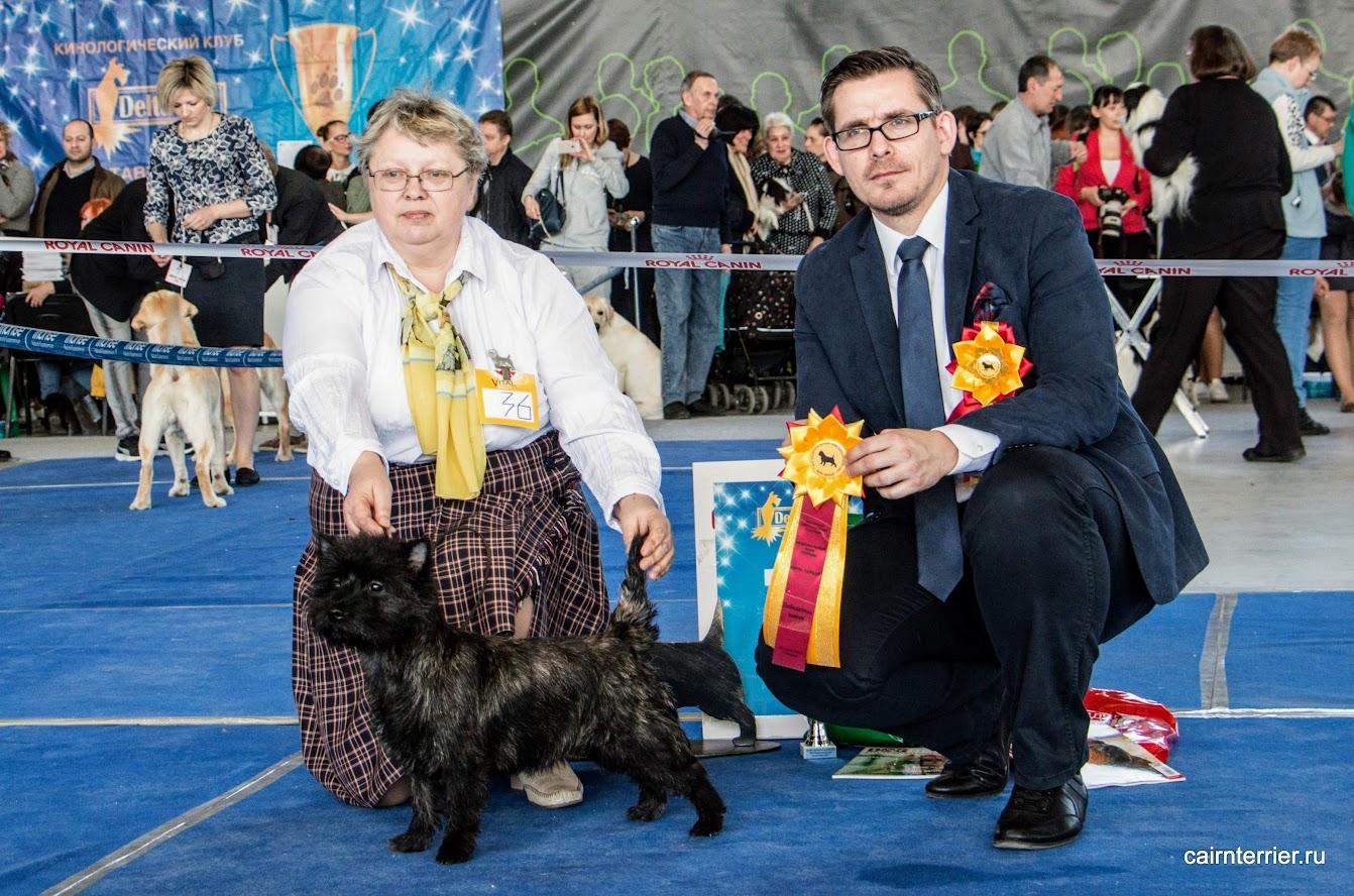 Фото керн терьера Элика из дома Еливс с владельцем питомника и экспертом на призовом месте выставки.