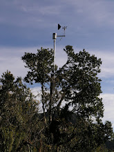 Photo: A weather station mounted in a tree