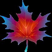 3D Autumn Maple Leaves Free