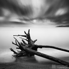 """Photo: Now featured on PhotoExtract: http://www.photoextract.com/plus-extract/2012/2/2  """"Shards"""" - http://www.createwithlightphotography.com  This is an 90 second exposure of a washed-up tree stump on Ambleside Beach in West Vancouver, British Columbia. The storm from a few days earlier was kind enough to deposit it in the perfect spot :-)  I used a 10 stop ND filter, plus a 2 stop hard grad ND filter to get the effect I was after.  Check out the larger version of this image on my website: http://www.createwithlightphotography.com/Photography/Waterscapes/13908691_bzzJkH#!i=1664753753&k=2htdf3w&lb=1&s=X2  I was lucky enough to spend a whole day chatting to and shooting with the wonderful and exceptionally talented long exposure photographer, +Maria Strömvik , in my home town of Vancouver before Christmas 2011. The conditions were great as was the company. I highly recommend checking out Maria's amazing images.  This is my contribution to the #LongExposureThursday theme, kindly curated by +Francesco Gola and +Le Quoc , the #ThirstyThursday theme, kindly curated by +Giuseppe Basile and +Mark Esguerra , the #FineArtPls theme, curated by the lovely +Marina Chen and +Fineao Fang , the #BWFineArtLE theme, curated by the amazing Mr +Joel Tjintjelaar and +Black and White Fine Art Photography Gallery , #InMotionThursday curated by +Scott Thomas , #SquaresAreSassy curated by the legendary +Nathan Wirth and finally the #PlusPhotoExtract theme, run by +Jarek Klimek  This image now qualifies for the +Long Exposure Fine Art Photography Gallery 100+ , curated by the awesome Mr. +Kees Smans :-)  All thoughts and comments welcome.  Please visit my website to view more of my images: http://www.createwithlightphotography.com  #PlusPhotoExtract #GrantMurray #CreateWithLightPhotography #BWFineArtLE #FineArtPls"""