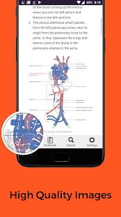 Anatomy FlashCards Free - náhled