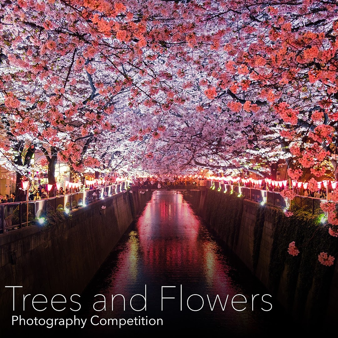 Trees & Flowers Photography Competition. Capture and submit photos of amazing trees and flowers from all around us.