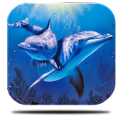 River Dolphin Live Wallpaper