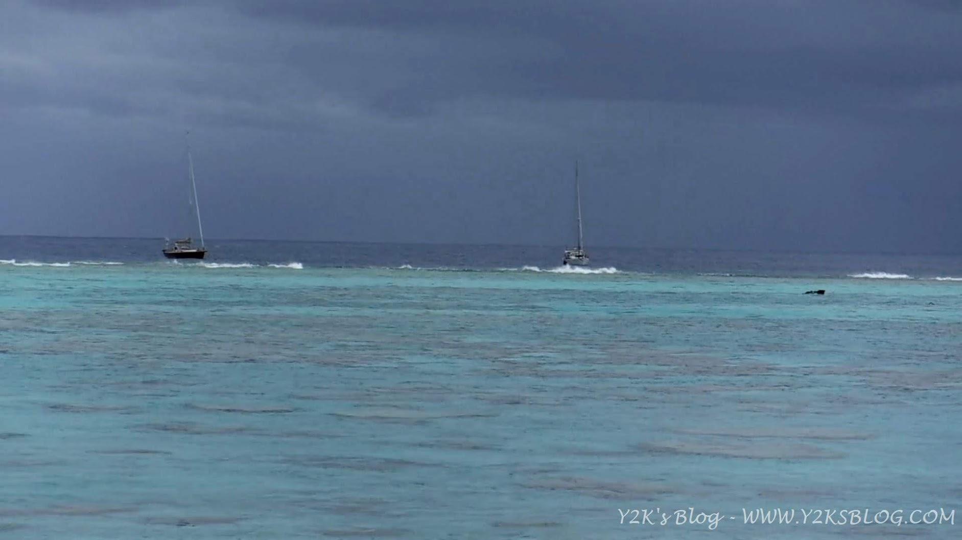 Cinnabar e Y2K rollanti fuori dal reef - Palmerston