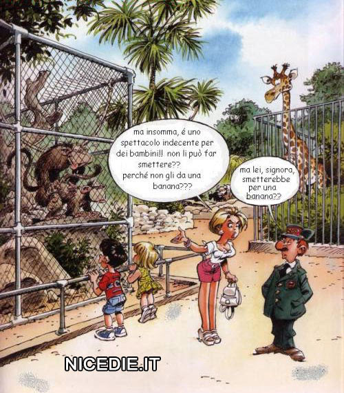una signora si lamenta con il guardiano dello zoo perché i bambini devono vedere le scimmie che fanno sesso: ma non può dargli una banana? Lui: lei smetterebbe per una banana?