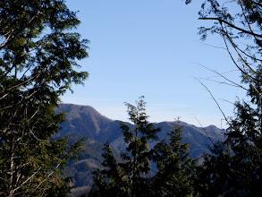 西台山と高尾山を望む