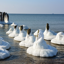 by Albina Jasinskaite - Nature Up Close Water