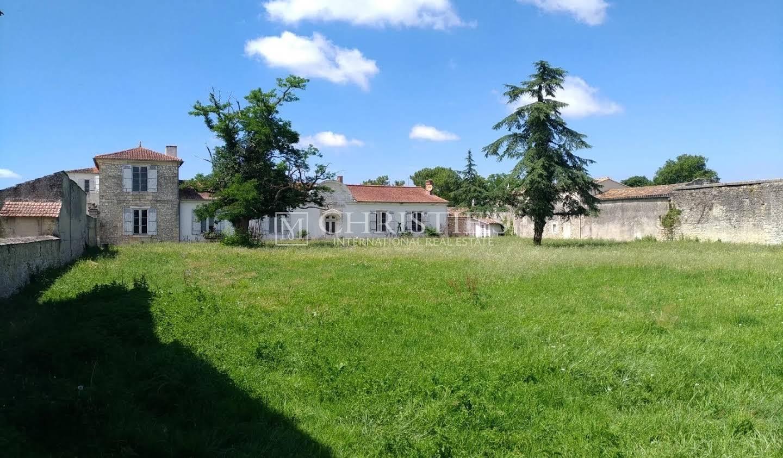 Vineyard Jau-Dignac-et-Loirac