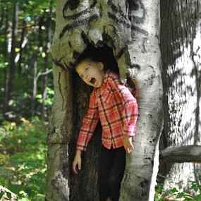 by Wendy Schultz - Public Holidays Halloween (  )