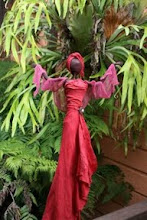 Photo: Magenta lady - lives in our garden