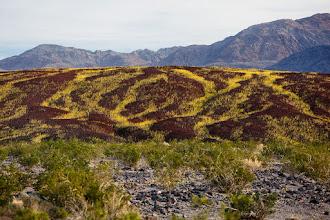 Photo: #deathvalley #landscapephotography