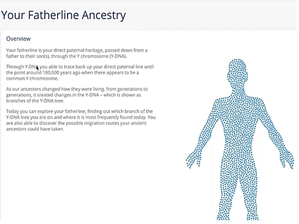 Father line ancestry reporting is done using Y-DNA