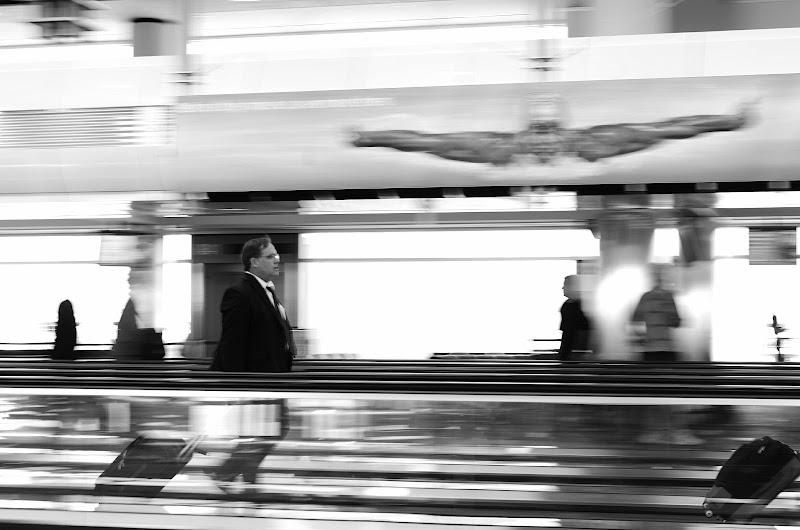 Photo: Flying Home - © Ricardo Lagos - Creative Commons (CC BY-NC 3.0)