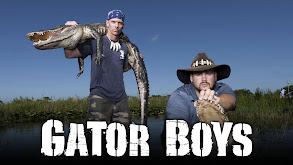 Gator Boys thumbnail