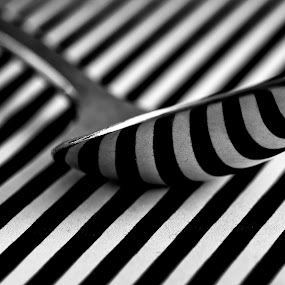 spoon by Kevin Towler - Black & White Objects & Still Life ( macro, black and white, macro photography, still life, white, spoon, stripes, close up, black,  )
