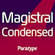 Magistral Latin and Cyrillic FlipFont Download on Windows