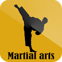 Martial arts icon