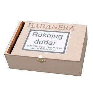 Brobergs Habanera 50 st