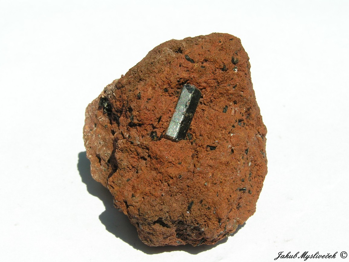 Photo: Krystal kaersutitu zarostlý v červeně zbarveném tufu (lokalita amfibolu). Velikost vzorku 41 mm. Nalezeno při exkurzi dne 2.7. 2016.
