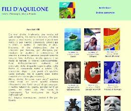 Photo: Estudio y 9 muestras anológicas con semblanza crítca, Fili d'Aquilone, enero 2007-octubre 2009, trad. Gloria Bazzocchi:   «Nuovi Classici nella poesia spagnola contemporanea»: http://www.filidaquilone.it/num005luquepinilla.html   Pere Gimferrer (2007-n. 5):  http://www.filidaquilone.it/num005luquepinilla2.html   Antonio Colinas (2007-n. 6):  http://www.filidaquilone.it/num006luquepinilla.html   Miguel d'Ors (2007-num 7):  http://www.filidaquilone.it/num007luquepinilla.html   Ángel Guinda (2007-n. 8):  http://www.filidaquilone.it/num008luquepinilla.html   Enrique Gracia Trinidad (2008-n. 9):  http://www.filidaquilone.it/num009luquepinilla.html   Eloy Sánchez Rosillo (2008-n. 11):  http://www.filidaquilone.it/num011luquepinilla.html  Chantall Maillard (2008-n. 12):  http://www.filidaquilone.it/num012luquepinilla.html   Jenaro Talens (2009-n. 14):  http://www.filidaquilone.it/num014luquepinilla.html   Abelardo Linares (2009-n. 16):  http://www.filidaquilone.it/num016luquepinilla.html