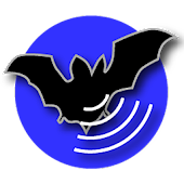 Bat Recorder