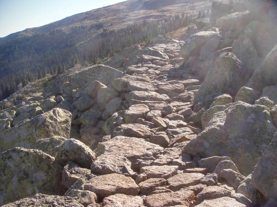 , To top of Vitosha mountain