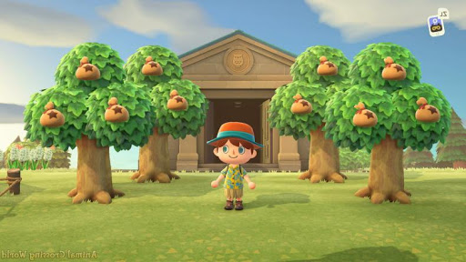 Guide Animal Crossing New Horizons (ACNH) Mod Apk ...