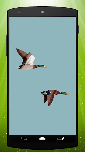 Retro Ducks Live Wallpaper