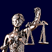 Law Offices of Evelyn J. Gruen icon