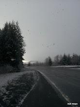 Photo: Snowy roads - Day 2